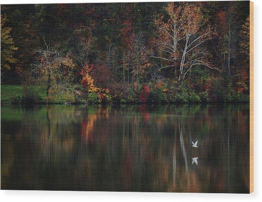 Evening On The Lake Wood Print
