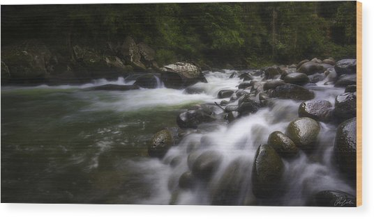 Evening On The Sarapiqui River Wood Print