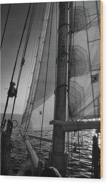 Evening Sail Bw Wood Print