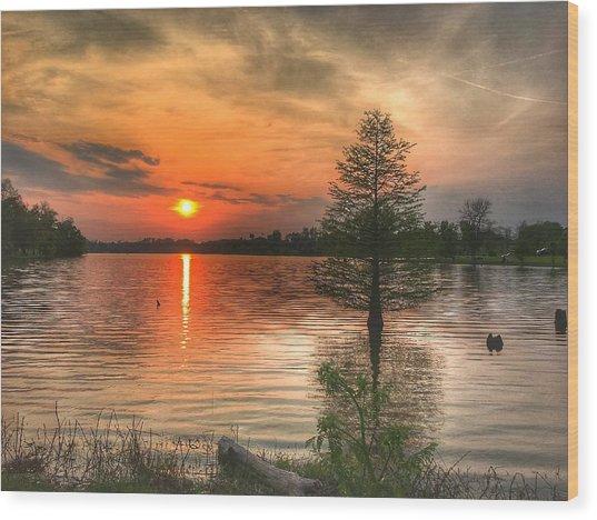 Evening Serenity  Wood Print