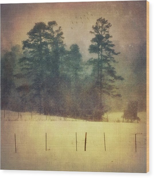 Evening Snow Glow Wood Print