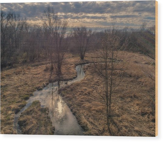 Evening Sun On The Creek Wood Print