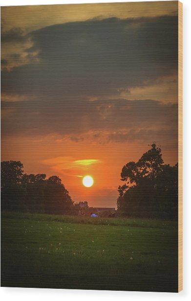 Evening Sun Over Picnic Wood Print