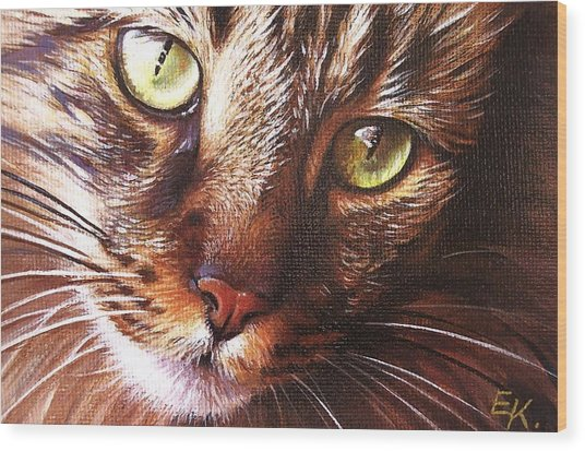 Evening Tabby Wood Print
