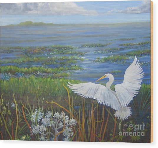 Everglades Egret Wood Print