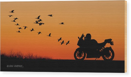 Everglades Sunset Wood Print
