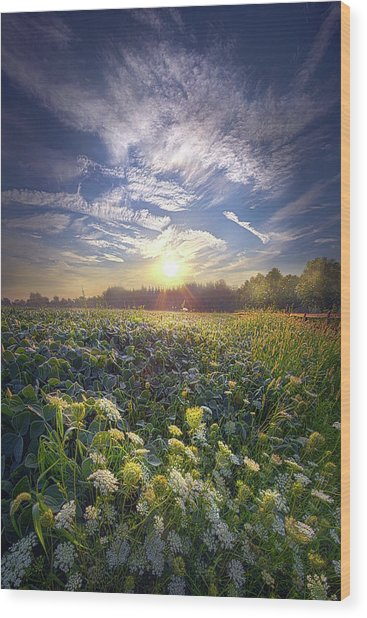 Wood Print featuring the photograph Every Sunrise Needs Its Day by Phil Koch
