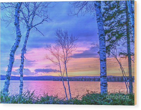 Everything Pastel Wood Print by Brenda Ketch