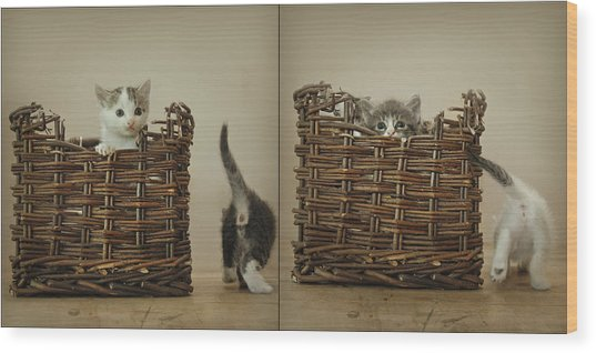 Exchange Wood Print by Inesa Kayuta