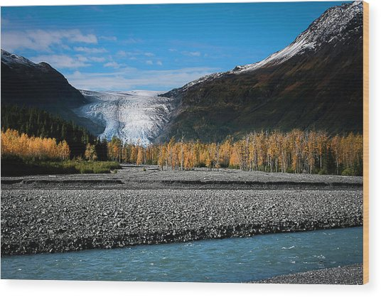 Exit Glacier Kenai Fjords National Park Wood Print