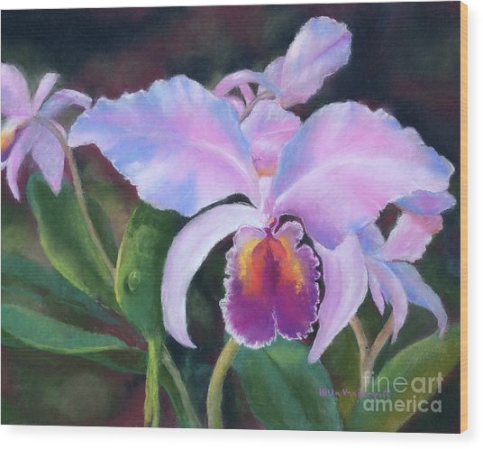 Exotic Pink Orchid Wood Print