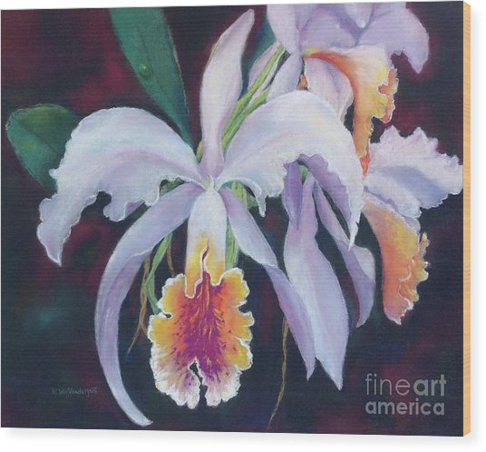 Exotic White Orchid Wood Print