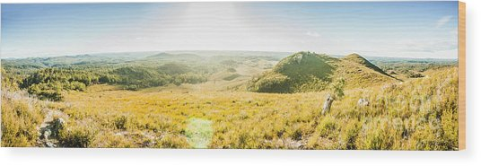 Expansive Open Plains Wood Print