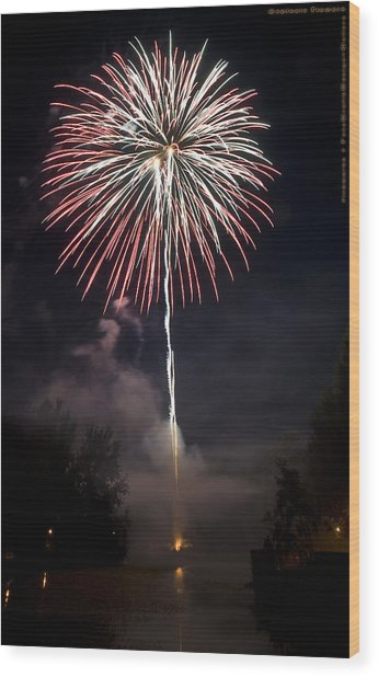 Explosive Flowers 7 Wood Print by Heinz - Juergen Oellers