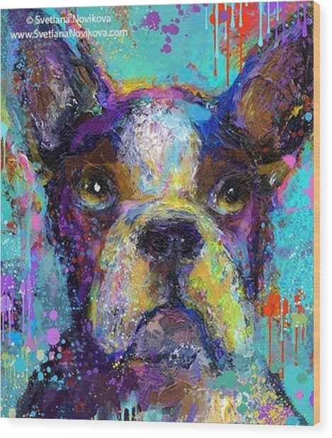Expressive Boston Terrier Painting By Wood Print
