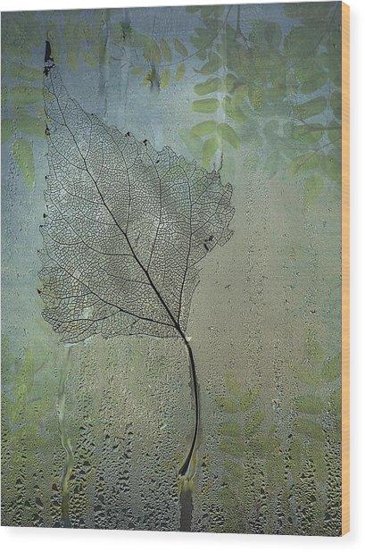 Expressiveness  Wood Print