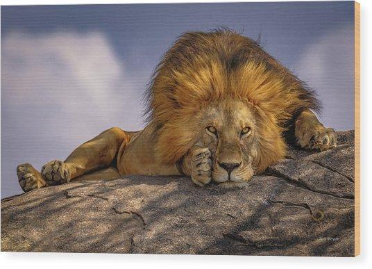 Eye Contact On The Serengeti Wood Print