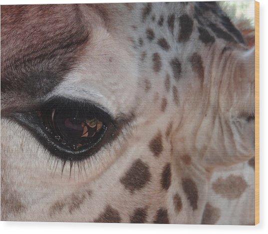 Eye Of A Giraffe Wood Print