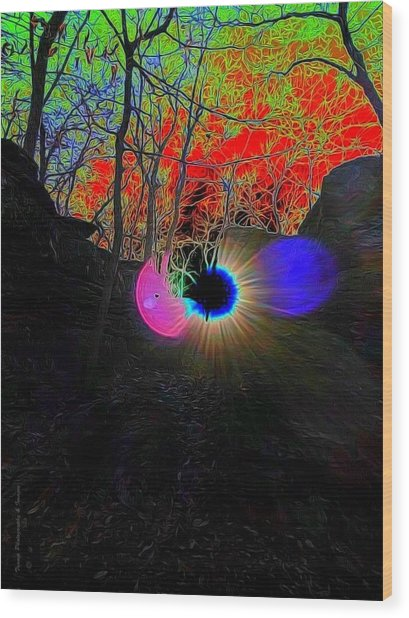 Eye Of Nature Wood Print