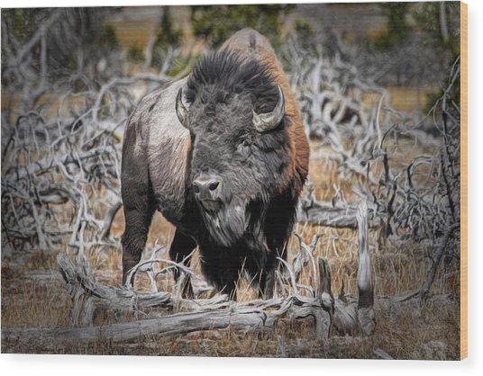 Eye Of The Buffalo Wood Print