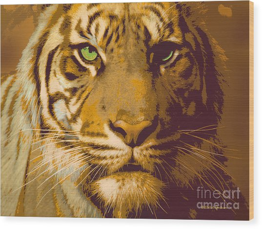 Eye Of The Tiger Animal Portrait  Wood Print