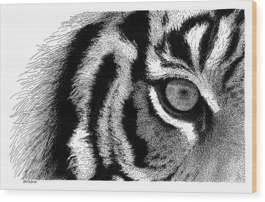 Eye Of The Tiger Wood Print