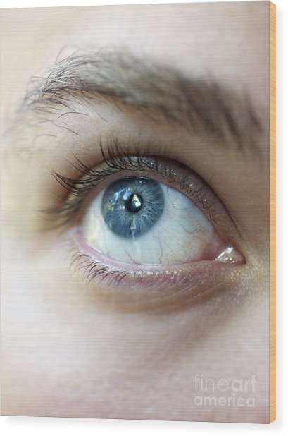 Eye Up Wood Print