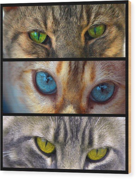 Eyes 1 Wood Print
