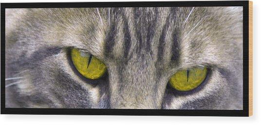 Eyes 1c Wood Print