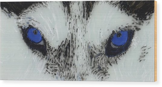 Eyes Of The Wild Wood Print