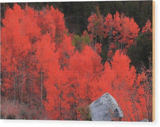 Faafallscene101 Wood Print
