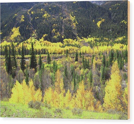 Faafallscene112 Wood Print