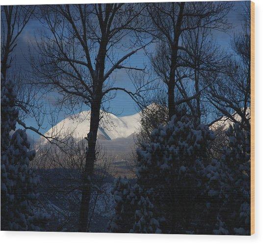 Faawinter001 Wood Print