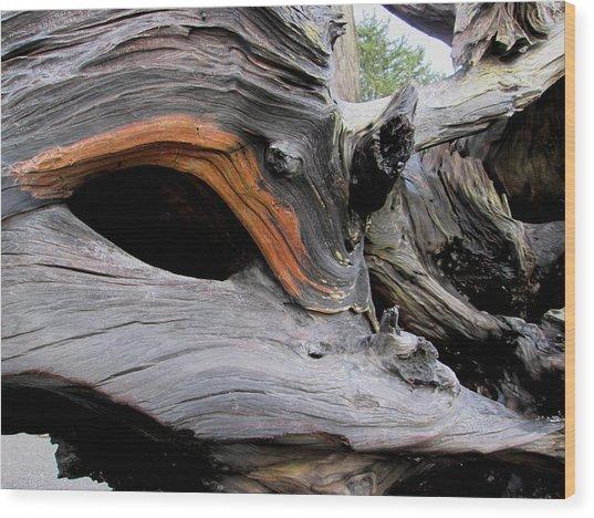 Driftwood Unicorn Wood Print