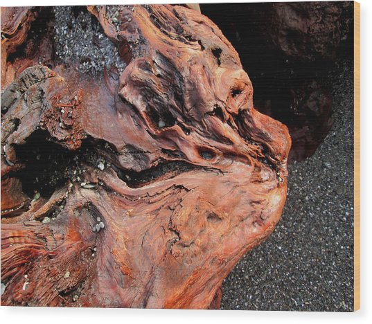 Faces In The Wood #5 - Lion King Wood Print