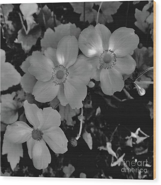 Faded Flowers Wood Print