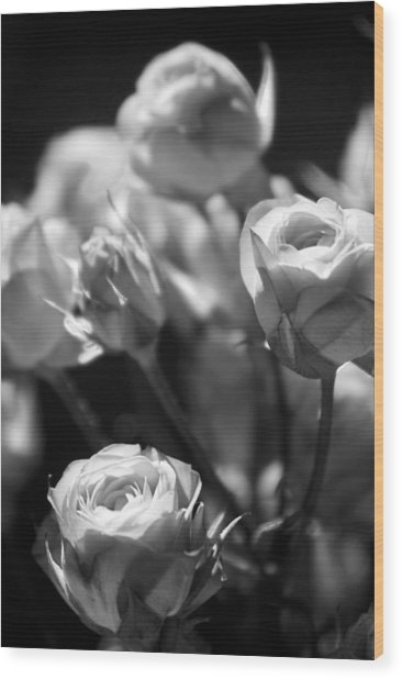 Faded Rose Wood Print
