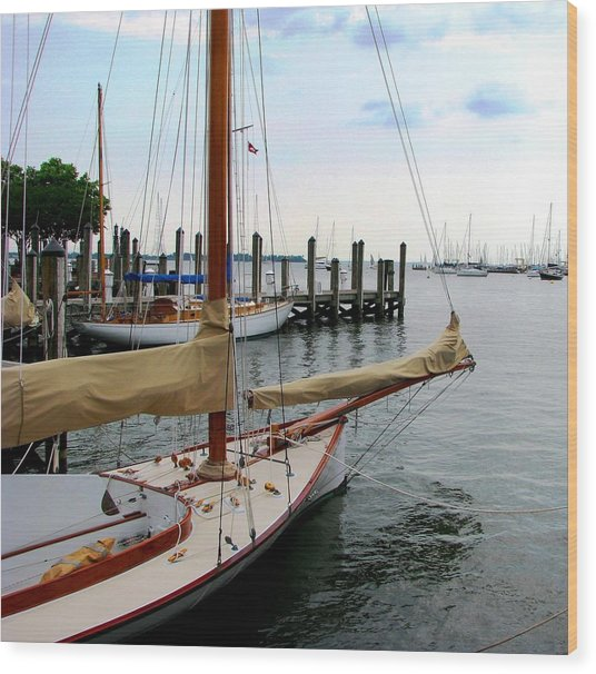Fair Weather Annapolis  Wood Print