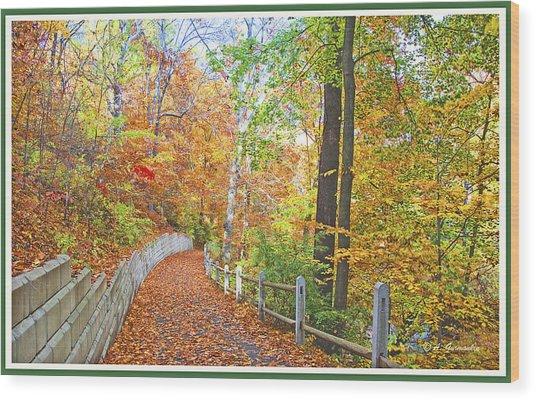 Fairmount Park Path In Autumn Philadelphia Pennsylvania Wood Print