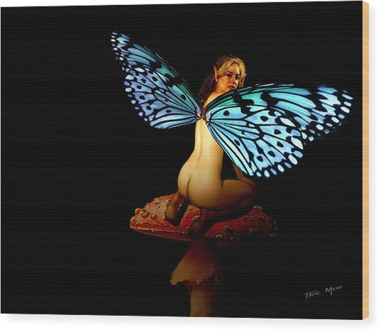 Fairy A Second Look Wood Print by Tray Mead