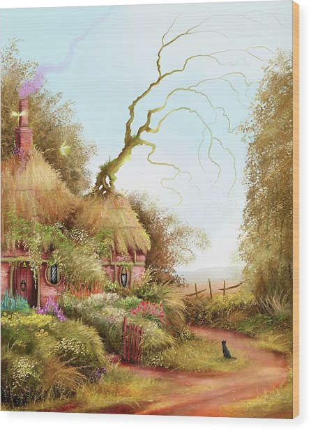 Fairy Chase Cottage Wood Print