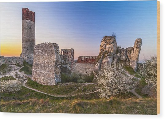 Fairy Tale Castle Remnants Wood Print