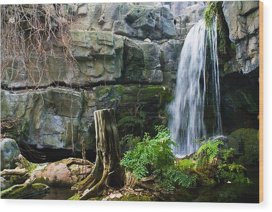 Fairy Waterfall Wood Print
