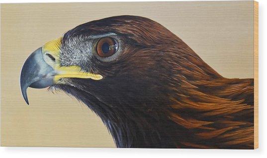 Falconer's Hawk - Harris Hawk Wood Print