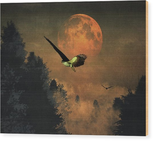 Falcons Hunting In The Evening Wood Print