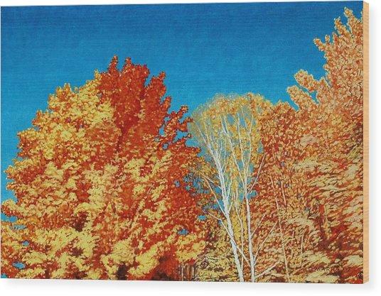 Fall Wood Print by Allan OMarra