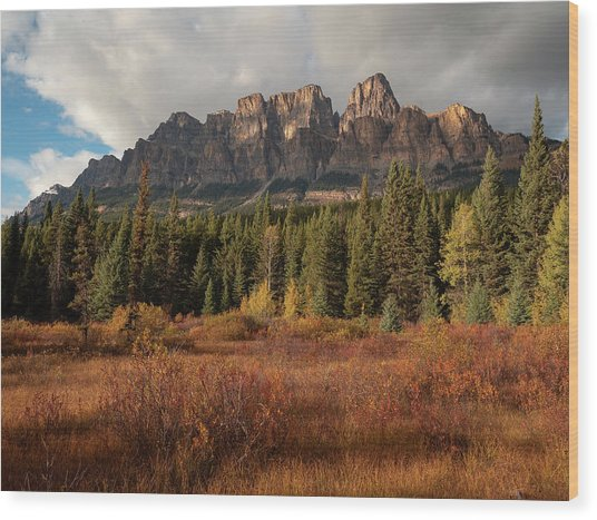 Fall At Castle Mountain Wood Print