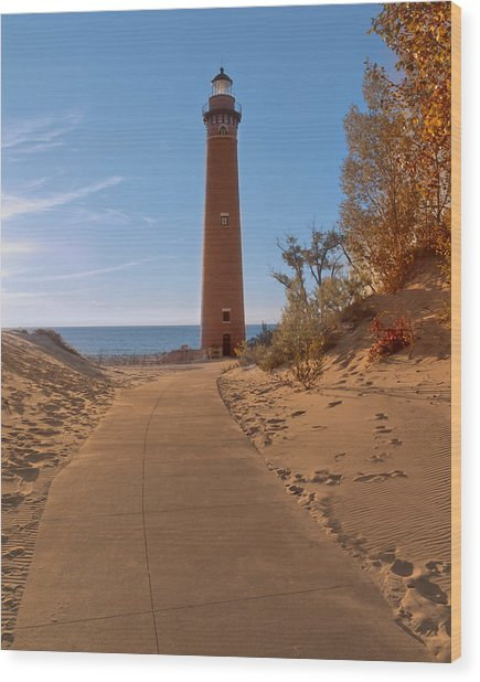 Fall At Little Point Sable Light Wood Print