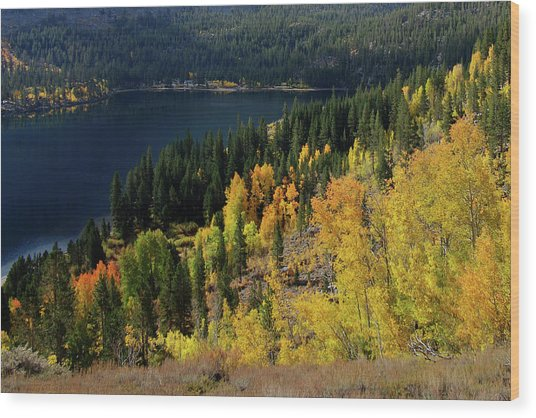 Fall At Rock Creek Lake Eastern Sierra Wood Print