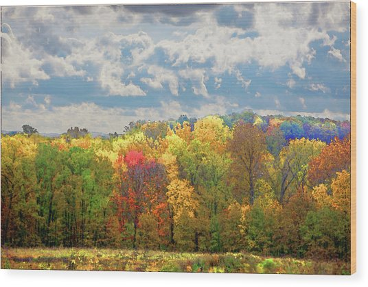 Wood Print featuring the photograph Fall At Shaw by David Coblitz